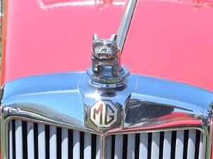 Click to view album: Hayward British Car Show and Swap Meet June 2012